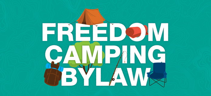 Freedom Camping Bylaw 2019 to be legally challenged image